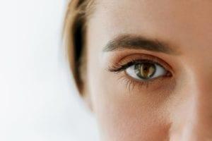 Closeup Of Beautiful Woman Big Brown Eye And Eyebrow