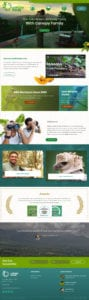 Canopy Family website screenshot
