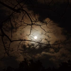 The moon on a dark night behind some clouds and branches