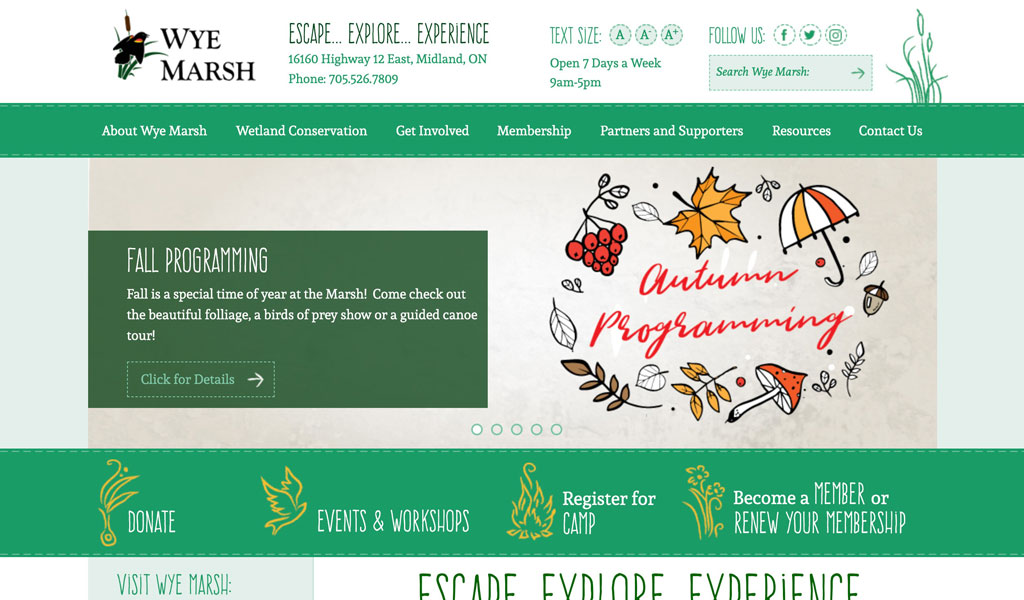 Wye Marsh website screenshot