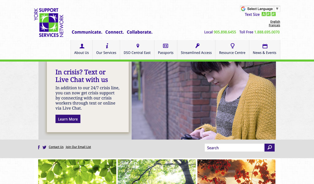York Support Services Network website screenshot